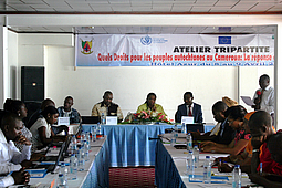 Central Africa, Cameroon, Indigenous, Human Rights